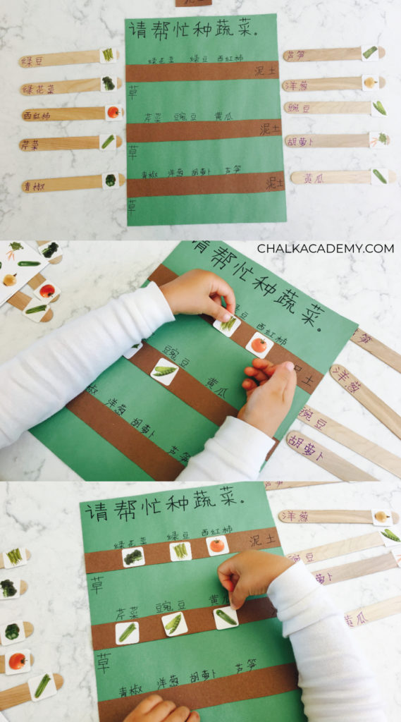 Boost language and literacy skills with a fun gardening activity - bilingual vegetable stickers planting activity