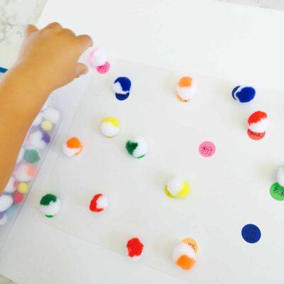 Pom Pom Color Matching Activity for Kids