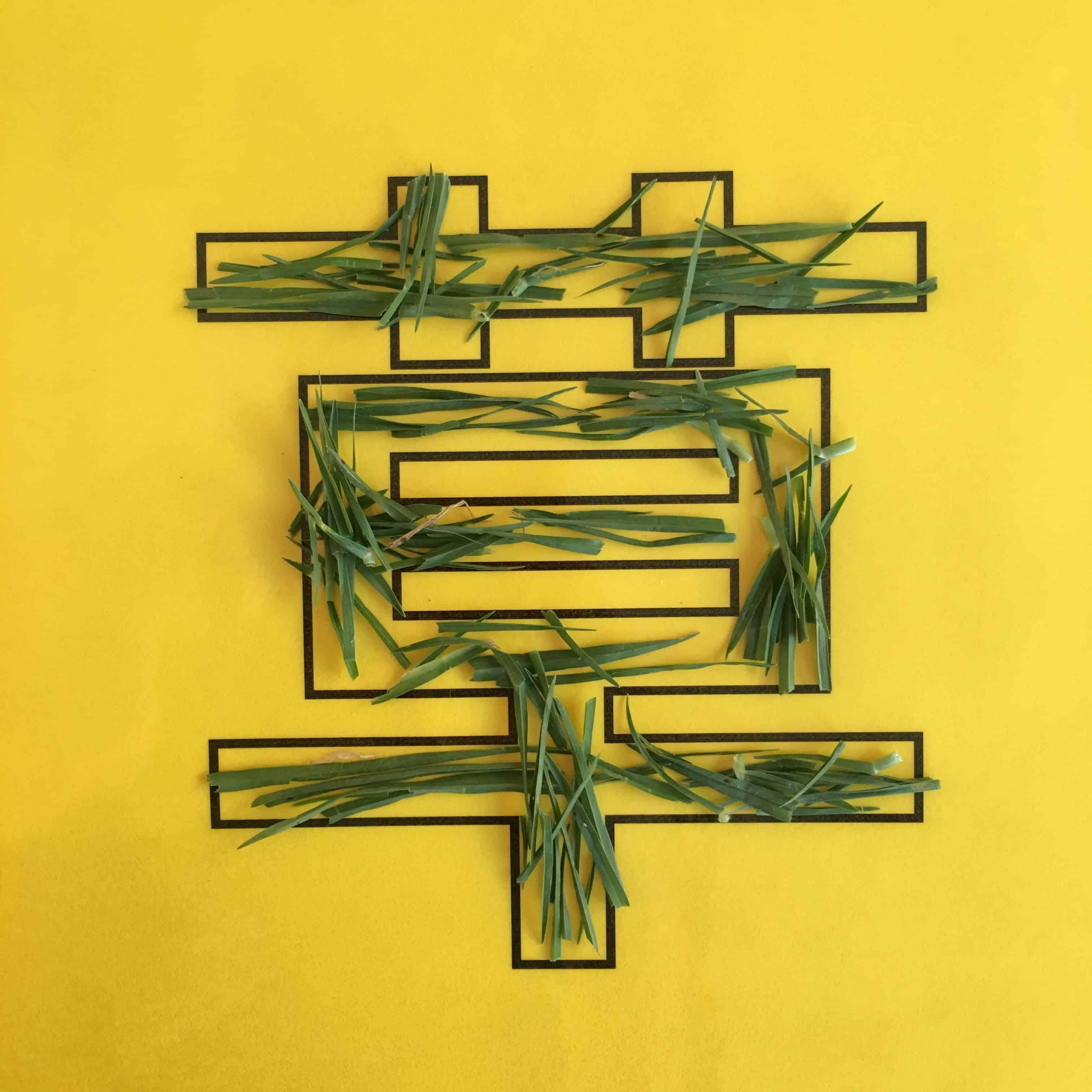 草 Chinese character with blades of grass