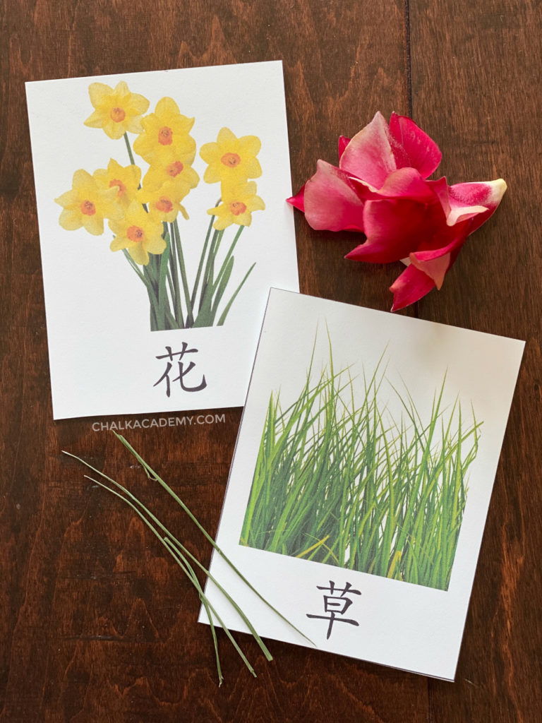 Flower and grass printables in Chinese