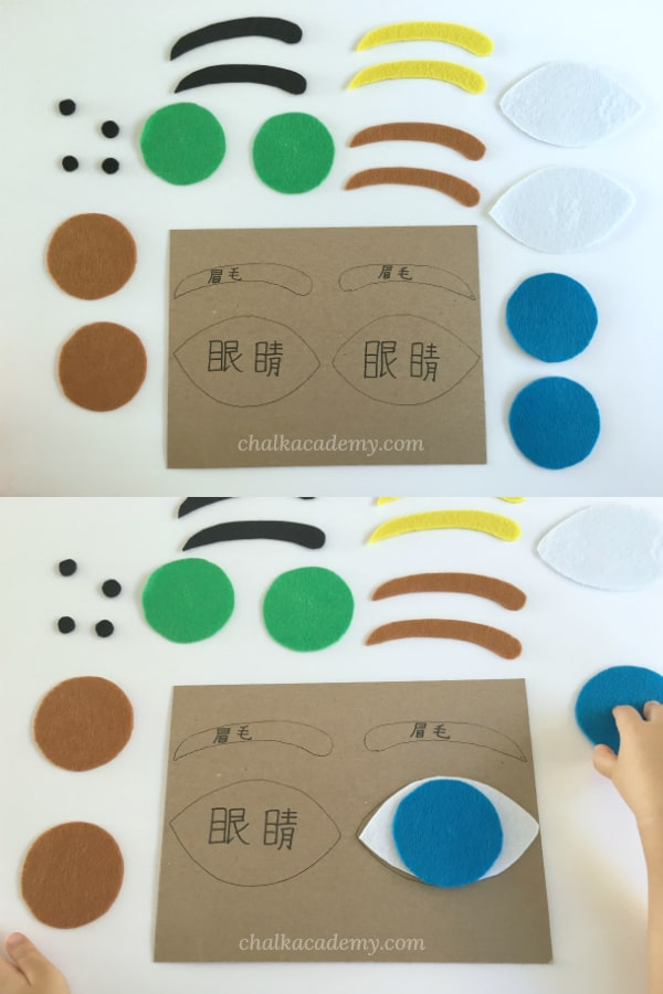 Homemade Human Eye Puzzle for Kids: Teach Kids Eye Colors and parts of the eye with a simple puzzle! Easy to DIY human body anatomy activity #chinese #kidsactivities