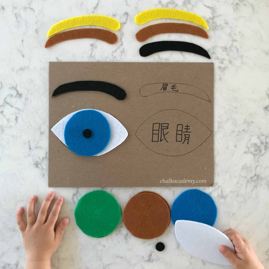 How to make a felt eye puzzle for children