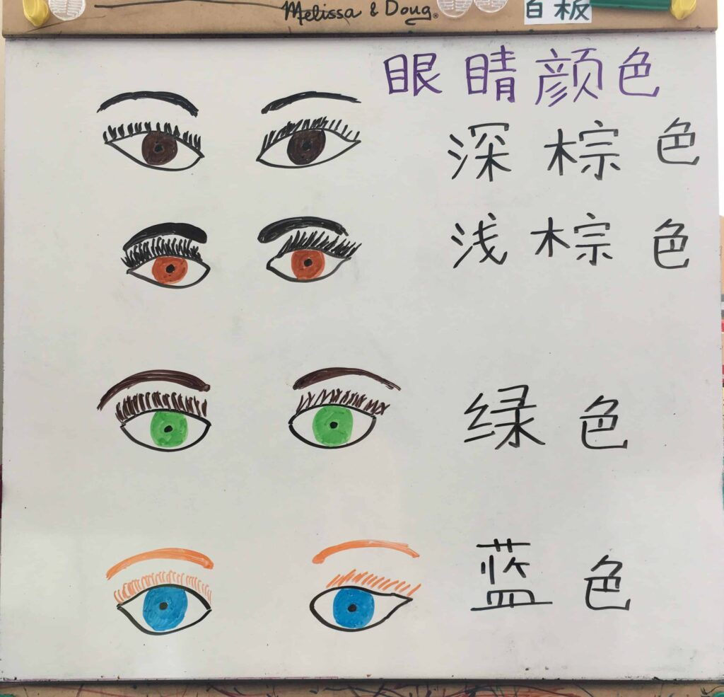 Teach kids eye colors in Chinese