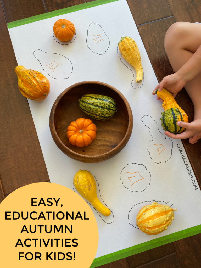 Pumpkins and gourds - silhouette matching DIY puzzle