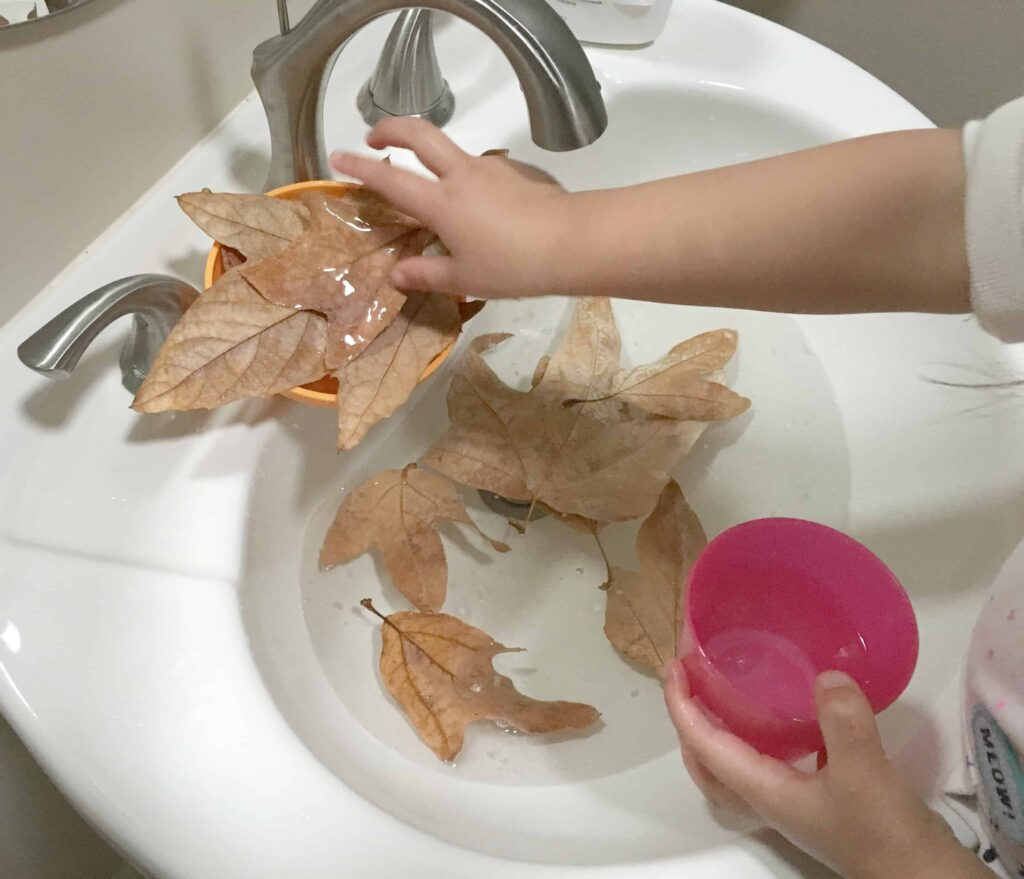 Washing leaves in the sink
