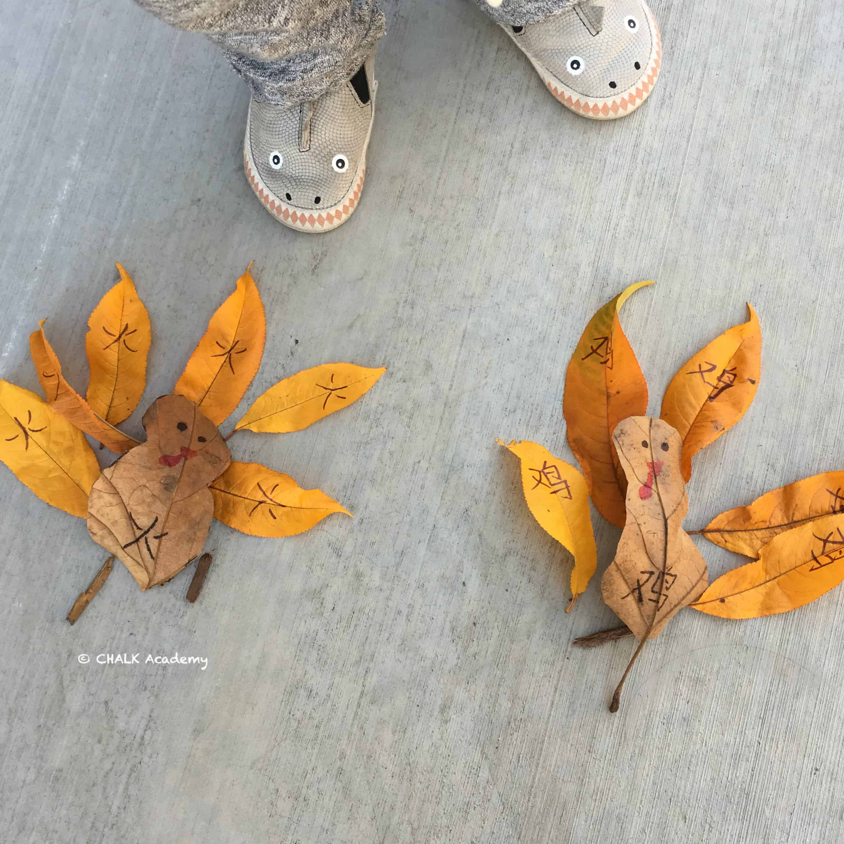 Chinese Thanksgiving Activity: Make a Turkey with Leaves