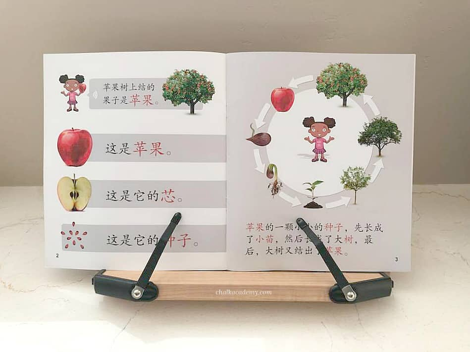 iSuper Science Chinese book on bookstand
