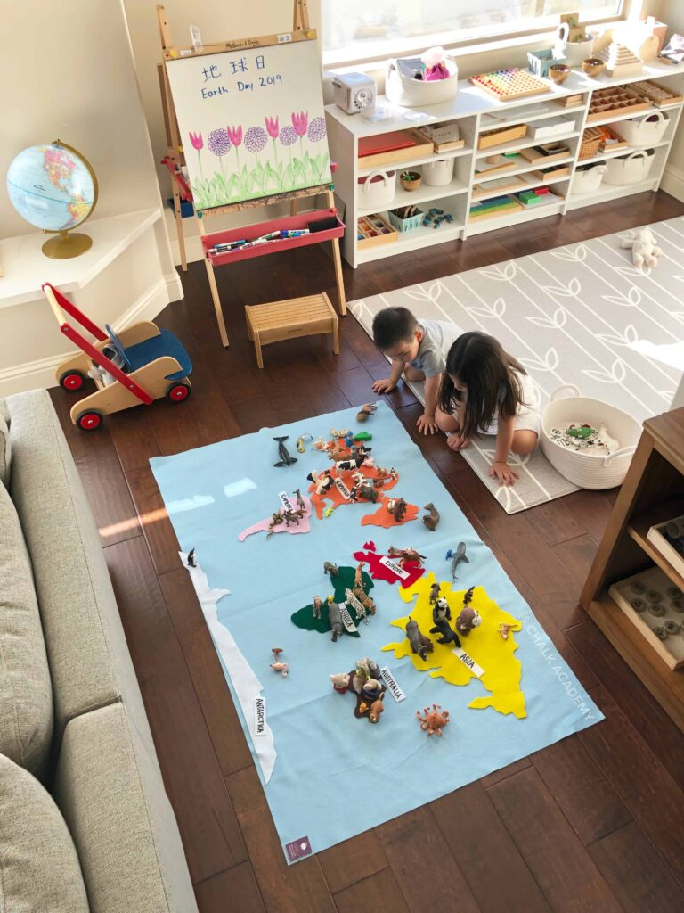 Felt Map of the World with Montessori Colors