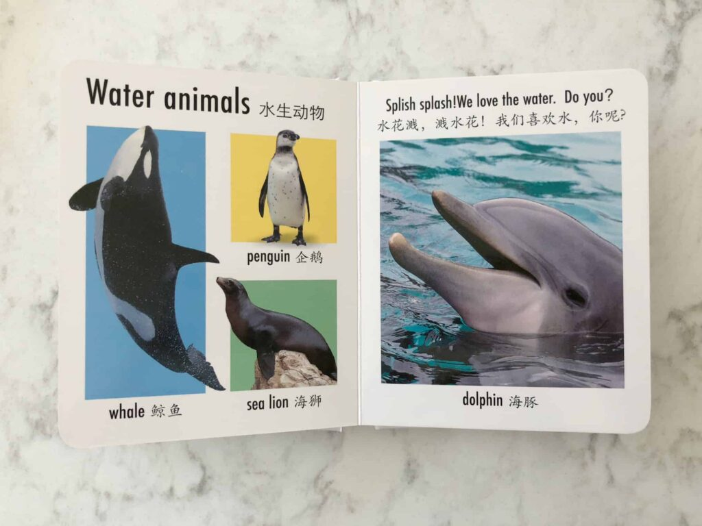 Chinese Books For Babies - Animals