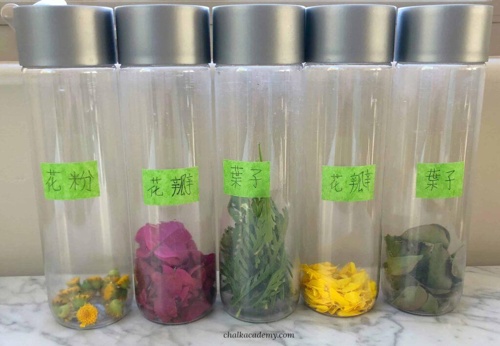 Flower Sensory Bottles