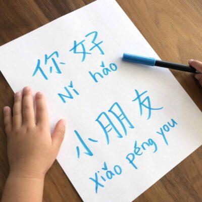 When Should My Child Learn Hanyu Pinyin?