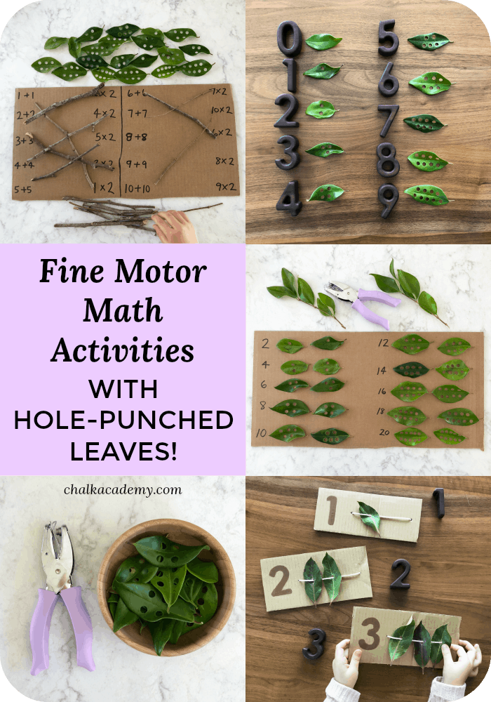 Fine Motor Math Activities with Hole-Punched leaves