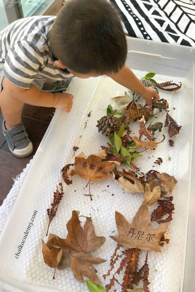 Leaf sensory bin with Schleich toy animals