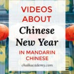 Chinese New Year YouTube Videos