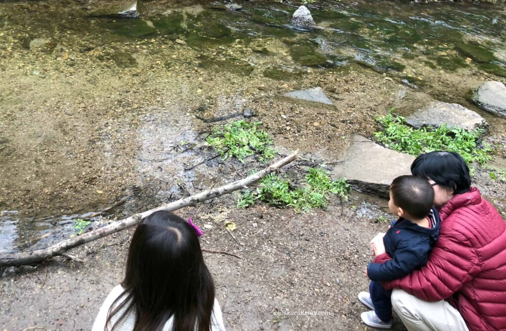 Children enjoying nature with our first Korean nanny