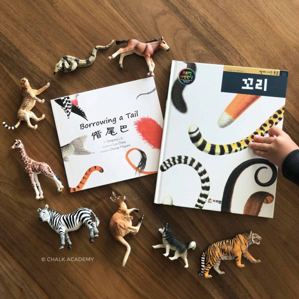 Chinese and Korean books about animal tails with Schleich toy animals