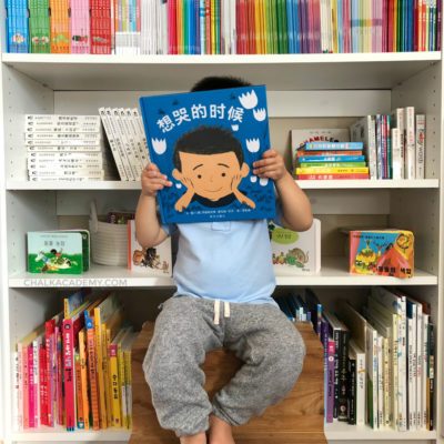 《想哭的时候》 Everyone – Chinese and English Book About Emotions
