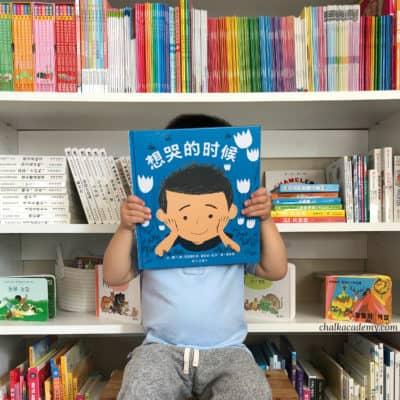 《想哭的时候》 Everyone – Chinese and English Book About Emotions