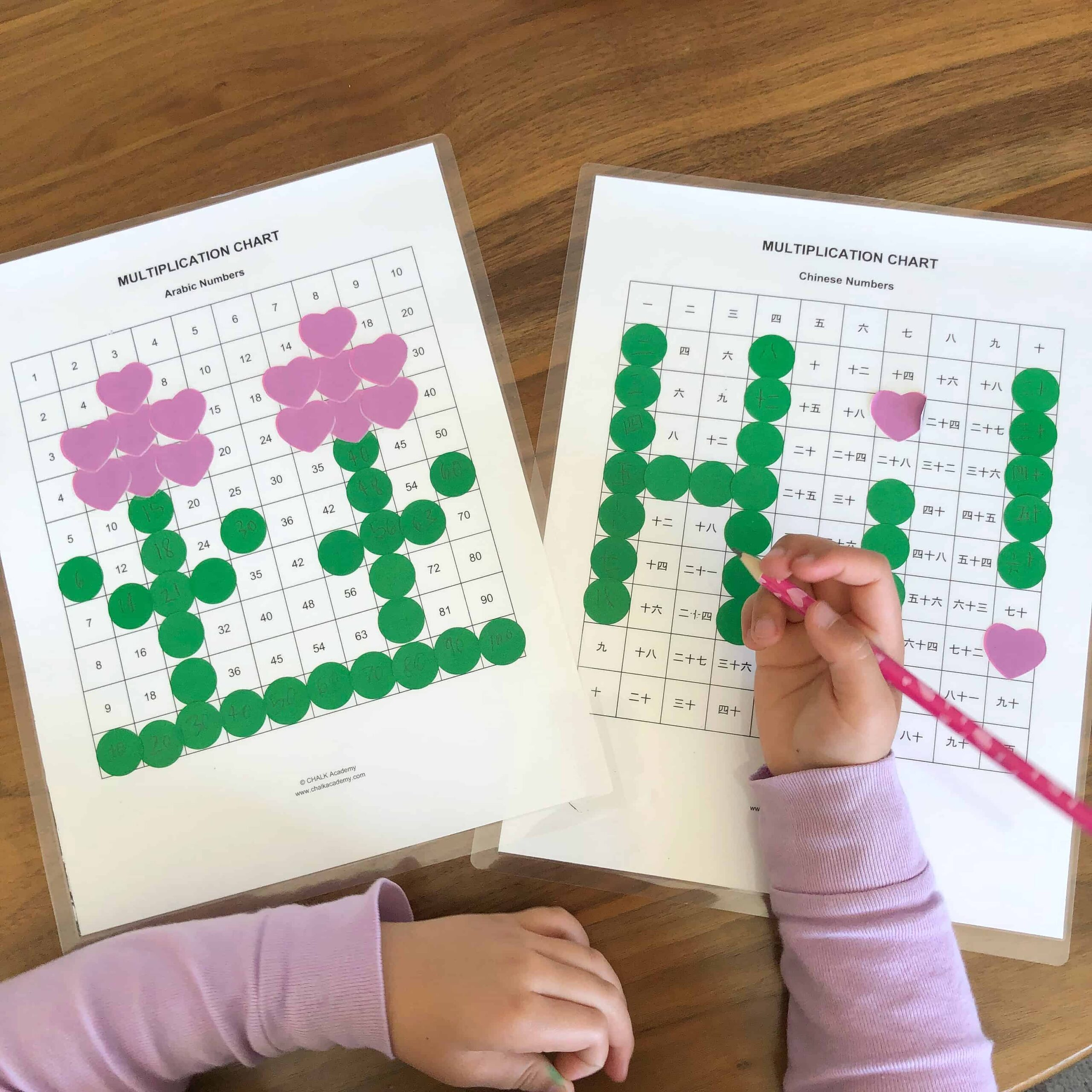 Montessori Pythagoras Board and Bilingual Multiplication Table (English and Chinese)