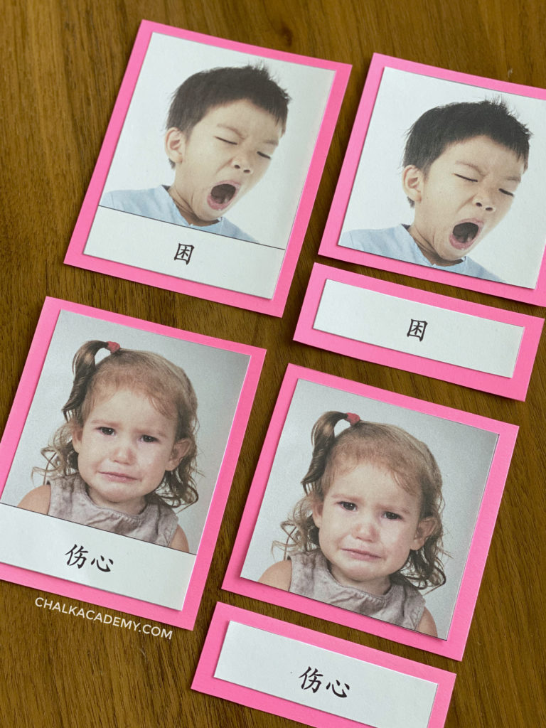 Chinese Montessori-3 part cards emotions