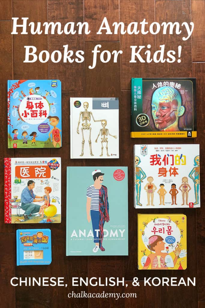 Human Anatomy Books for Children in Chinese, English, and Korean