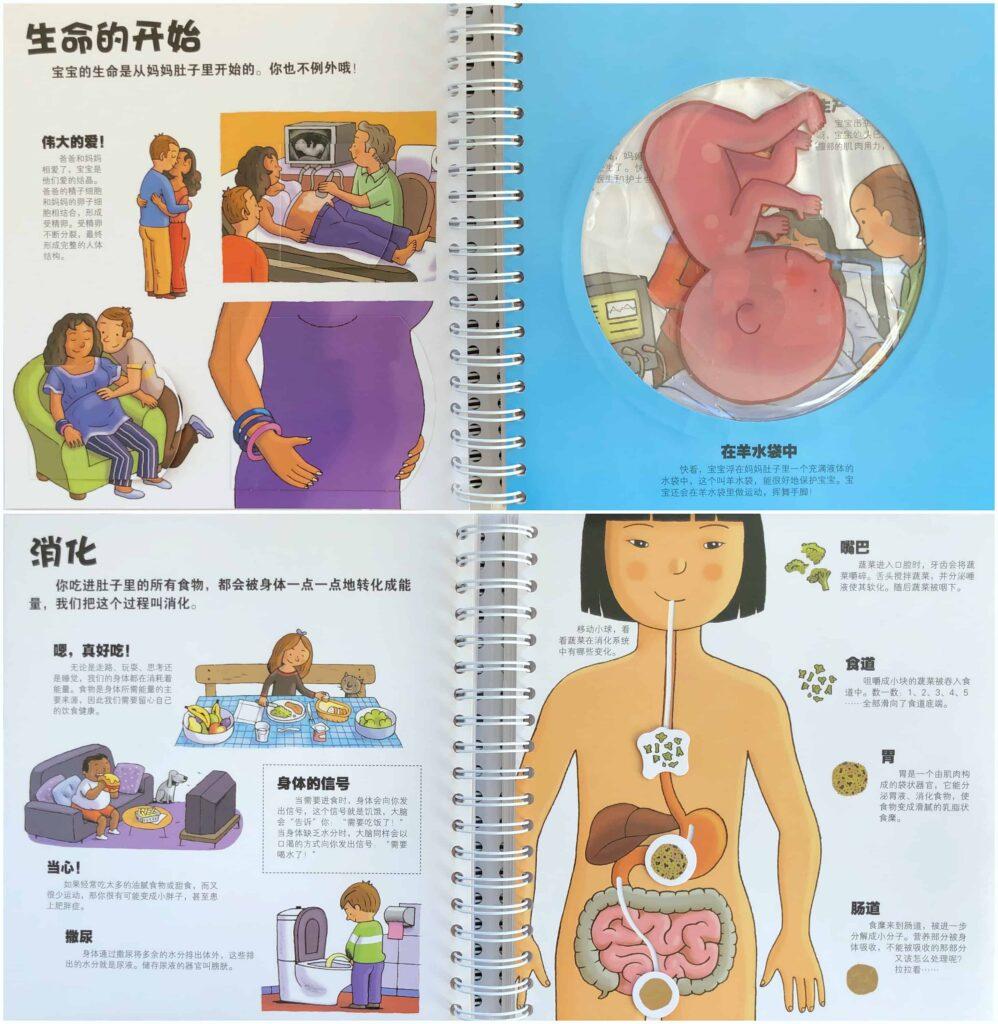 Chinese 3D Human Anatomy book: 乐乐趣身边得科学系列 - 我们的身体