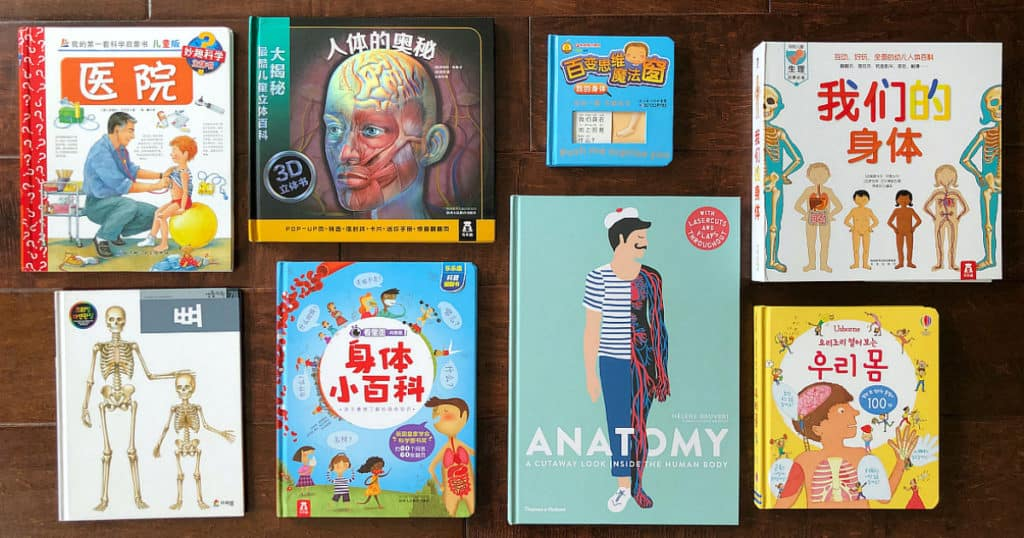 Anatomy books for children in English, Chinese, and Korean