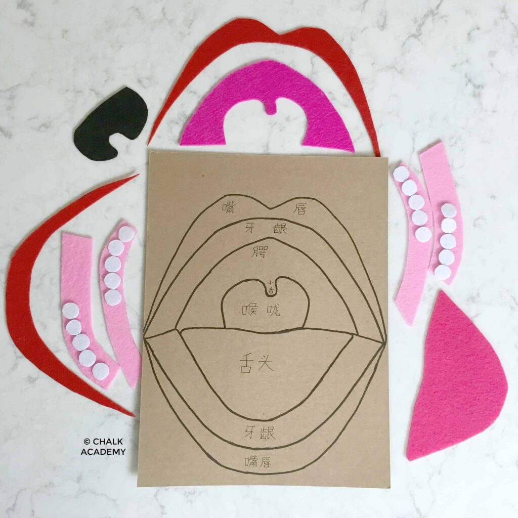 DIY Mouth Puzzle - unassembled