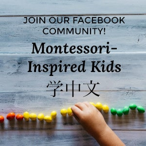 Montessori Group
