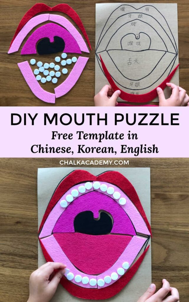 DIY felt and cardboard mouth puzzle - free template in Chinese, English, and Korean