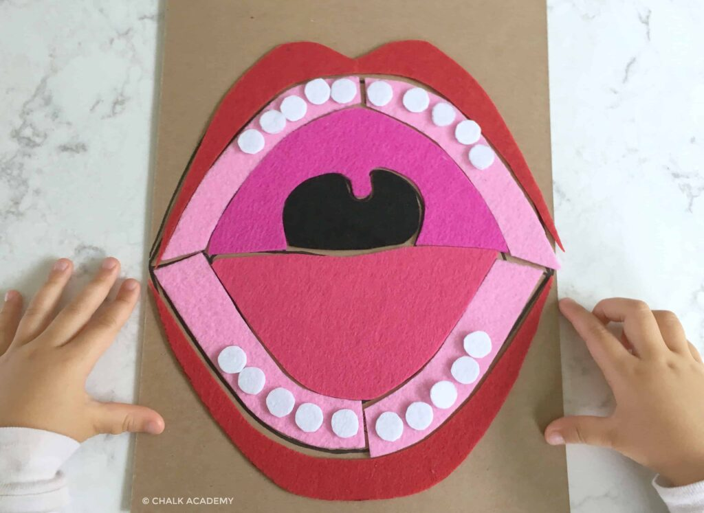 mouth puzzle made of felt and cardboard