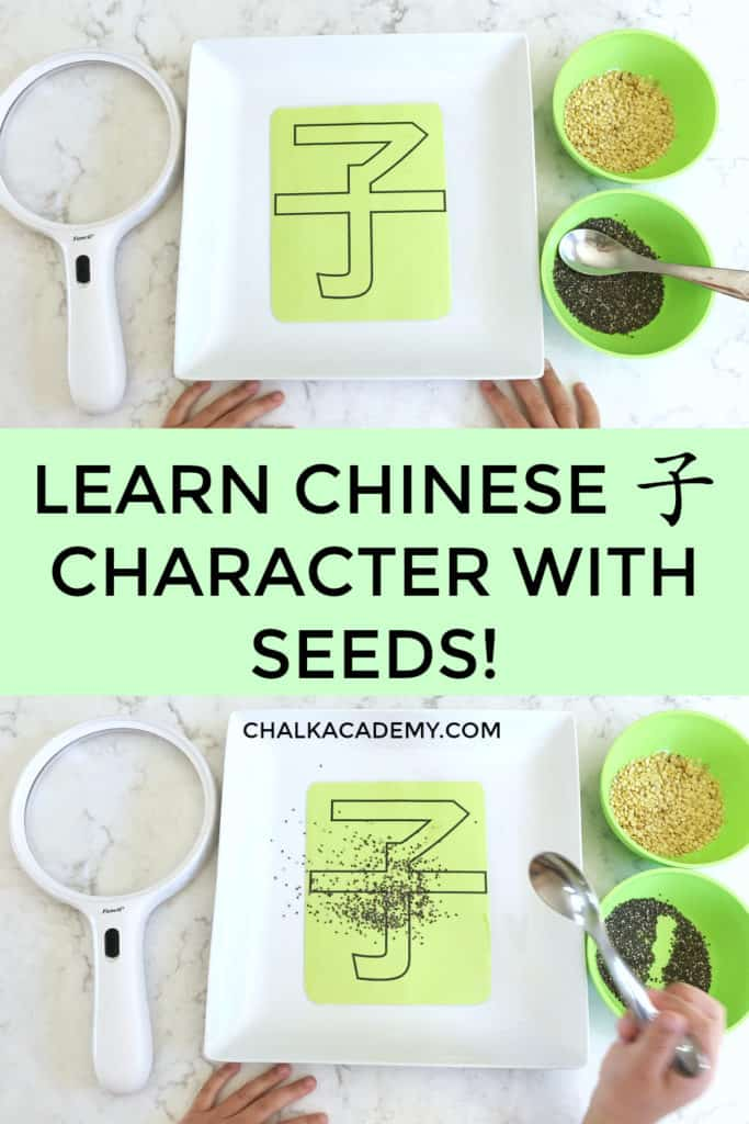 Learn to Read and Write Chinese Character 子 with Seeds