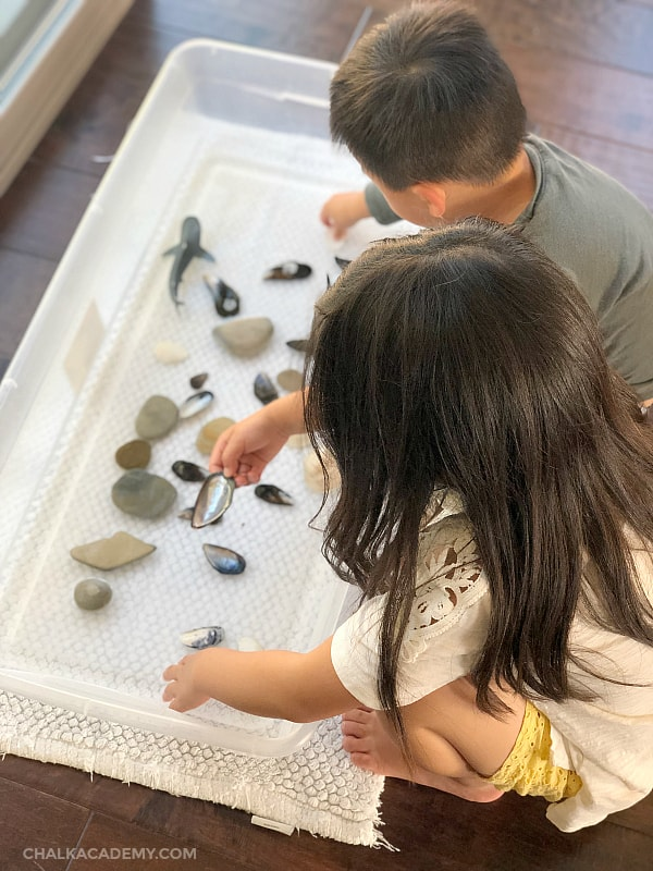 Water play with rocks, shells, and toy animals