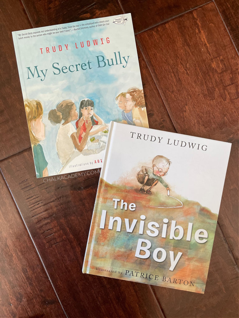 Invisible Boy and My Secret Bully by Trudy Ludwig