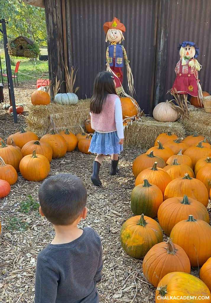 Asian (Chinese / Korean - American) children visit a pumpkin and apple farm in the autumn season