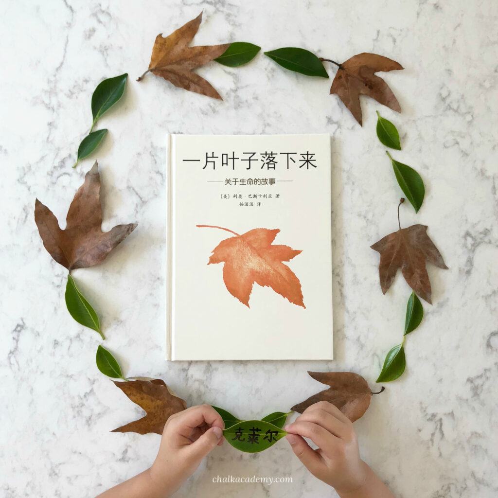 Fall of Freddie the Leaf 一片叶子落下来 book about nature, life, death, and seasons in simplified Chinese