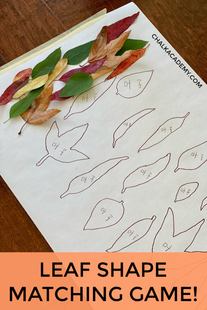 Leaf Shape Matching Game - simple and free nature activity for kids
