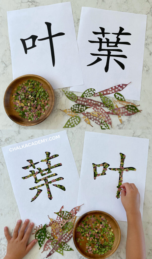 Tracing Chinese character 叶/葉 with leaves
