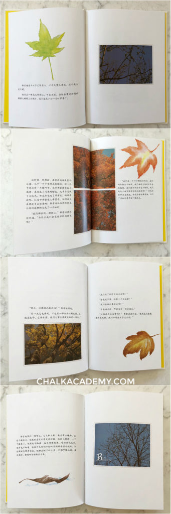 Fall of Freddie the Leaf 一片叶子落下来  Chinese and English book review