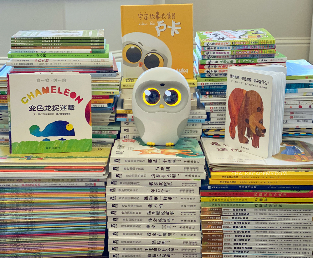 Chinese books that Luka Robot can read