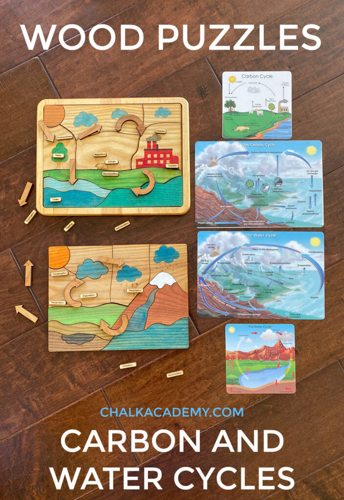 Wood Science Puzzles - carbon and water cycles