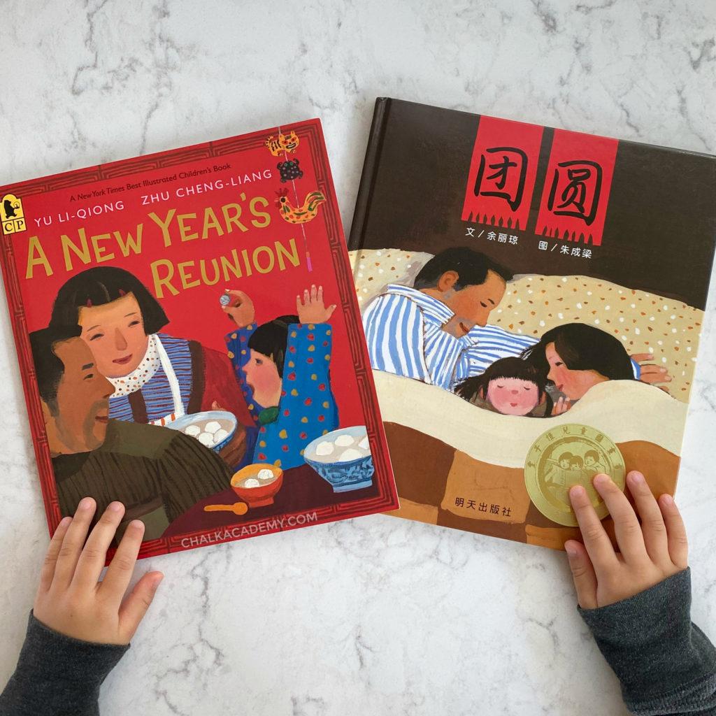 团圆 A New Year's Reunion book for kids