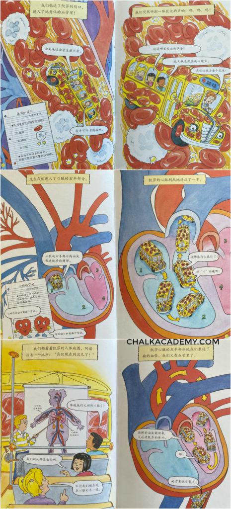 Chinese Magic School Bus - Inside the body bridge book