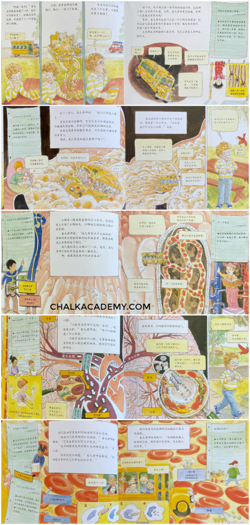 Chinese Magic School Bus - Inside the human body picture book