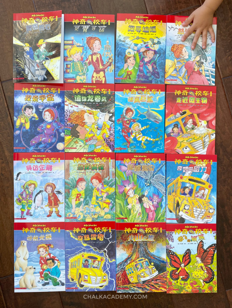 Chinese Magic School Bus Chapter Books 阅读版