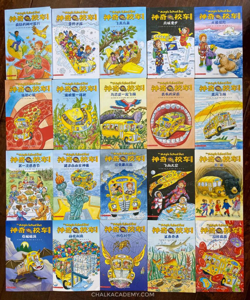 Chinese Magic School Bus Bridge Books 桥梁版