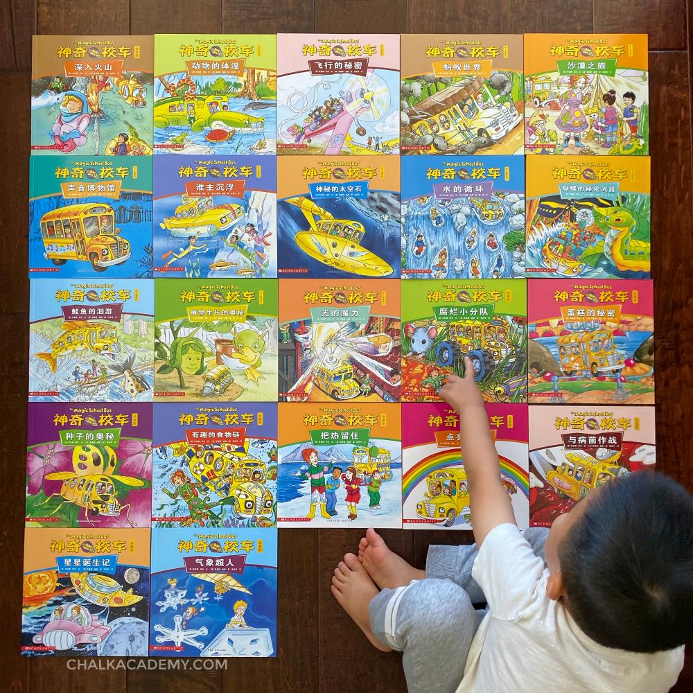 Chinese Magic School Bus Cartoon Books 动画版