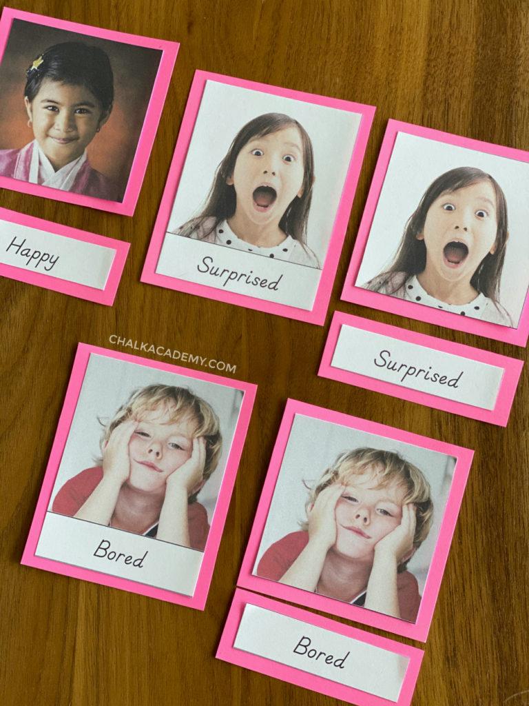 English Montessori-3 part cards D'nealian font