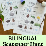 Bilingual nature scavenger hunt for kids - free printable in English, Chinese, and Korean