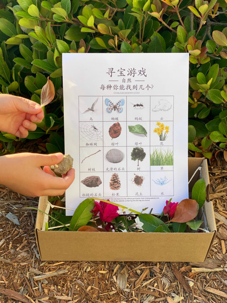 Chinese Nature Scavenger Hunt - free printable for kids, teachers, homeschooling families, schools